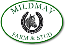 mildmay farm and stud